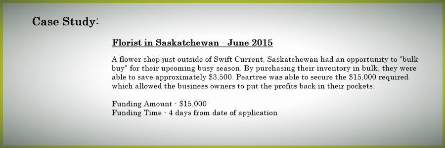 flower_shop_financing_casestudy